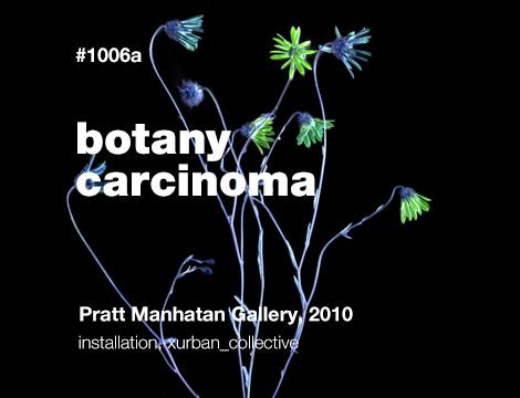 Botany Carcinoma