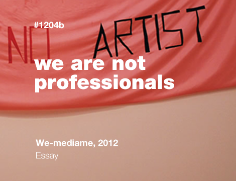 We are not professionals